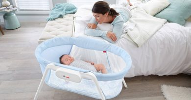 Baby Bassinet Reviews 2020