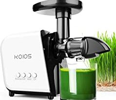 Top 10 Best Healthy Juice Maker Reviews Of 2020